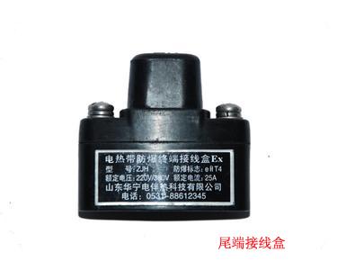 电热带系统安装是相应的接线盒和配件